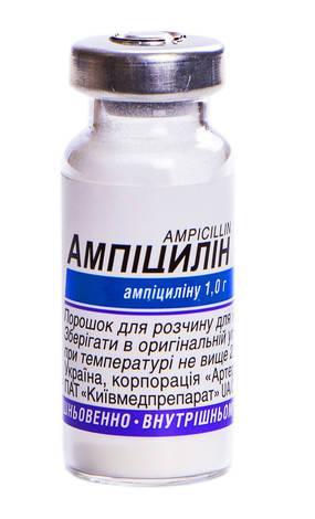 Ампіцилін порошок для ін'єкцій 1 г 1 флакон